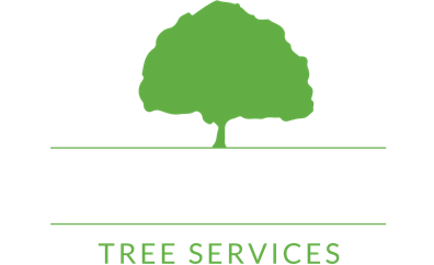 Gavin Hobson Tree Services Nuneaton